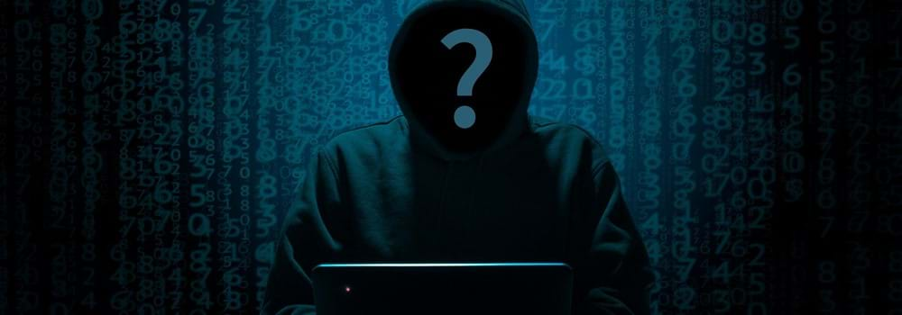 Hackers, Scammers and Thieves